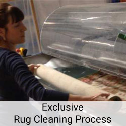 exclusive rug cleaning process
